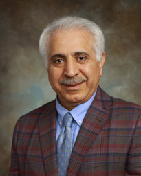 Dr. Saeid Abedin picture